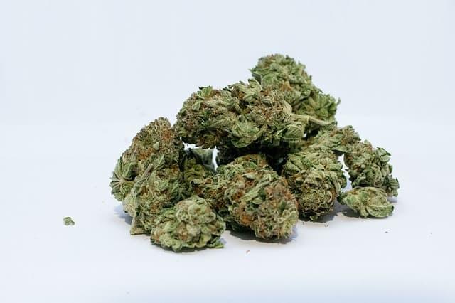 Cannabis beantragen Krankenkasse